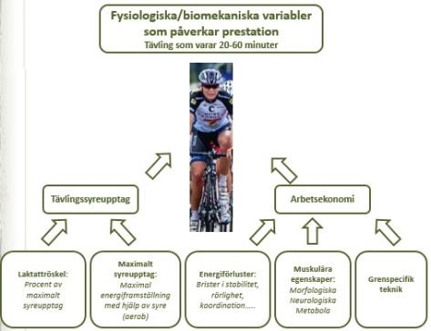 fysiologiskabiomekaniska