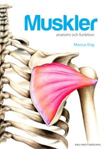 Muskler - anatomi och funktion